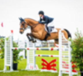 show jumping eventing equestrian horse trainer