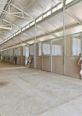 28 Stall Barn Inside