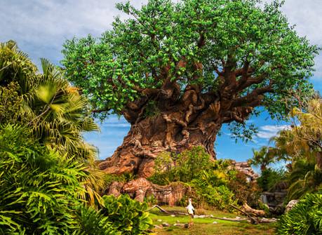 tree-of-life-gallery01.jpg