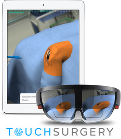 Touch Surgery