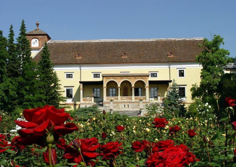 Blick vom Rosarium auf das Schloss
