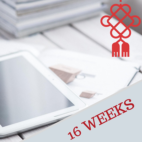 Business Chinese Course CH103 - 16 weeks (48hours)