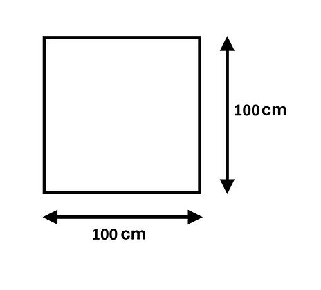 Cuadro de 100 x 100 cm
