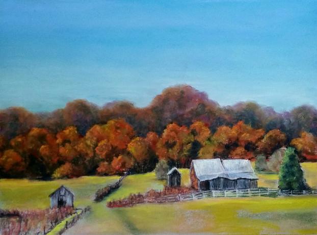 Bumpy Oak Road Farm