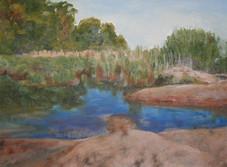 Cove Marsh