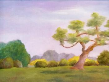 Exotic Tree, River Farm