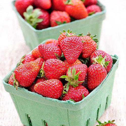 Farm Fresh Strawberries by the Quart