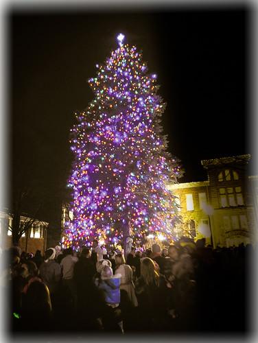Christmas tree with soft edges 1.jpg