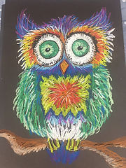 Helen's Art Space Pastel OWL.jpg