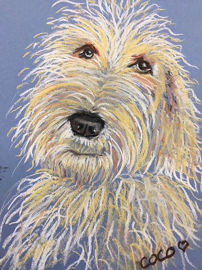 Dog Portraits - Commissions Available