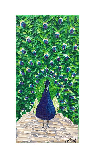 Peacock Oil Painting