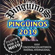 Pingüinos 2019