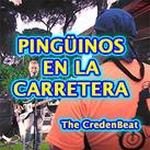 """""""Pingüinos en la Carretera"""" - The CredenBeat"""