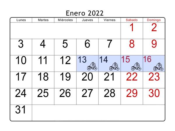 Pinguinos-Enero 2020.PNG