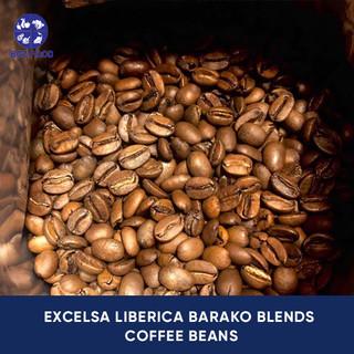 Excelsa Liberica Barako Blends Coffee Bean