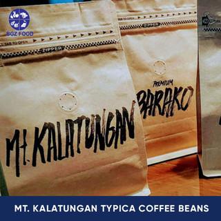 Mt. Kalatungan Typica Coffee Beans