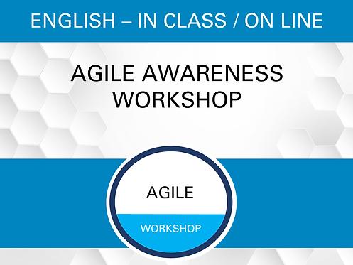 Agile Awareness Workshop