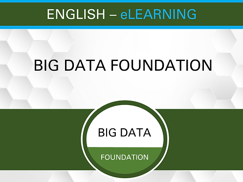 BIG DATA Foundation Premium - eLEARNING