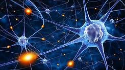 neurologie_réhabilitation_chiropratique.