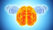 chiropracteur chiropraxie neurologie Lyon séquelles AVC traumatisme cranien Parkinson céphalées maux de tête migaine douleurs dos sciatique