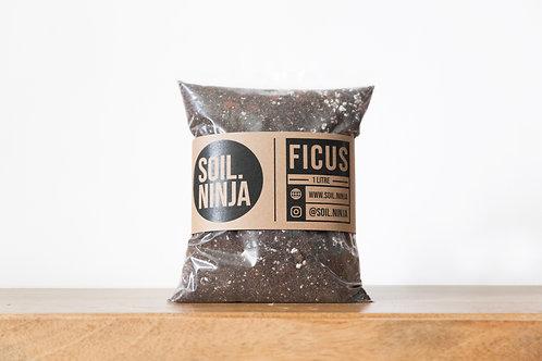Premium Ficus Soil Mix