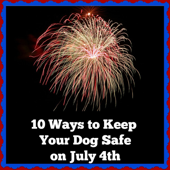 Fidos and Fireworks: PEOPLE's Pet Vet on How to Keep Your Dog Calm During July 4th Festivities