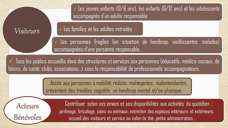 Visiteurs_-_Acteurs_bénévoles.jpg