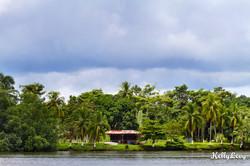 Sierpe River, Costa Rica
