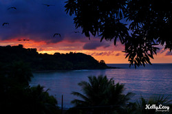 Sunset. Drakes Bay, Costa Rica