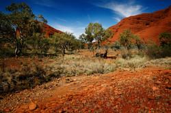 Base Hike. Ayers Rock, Australia