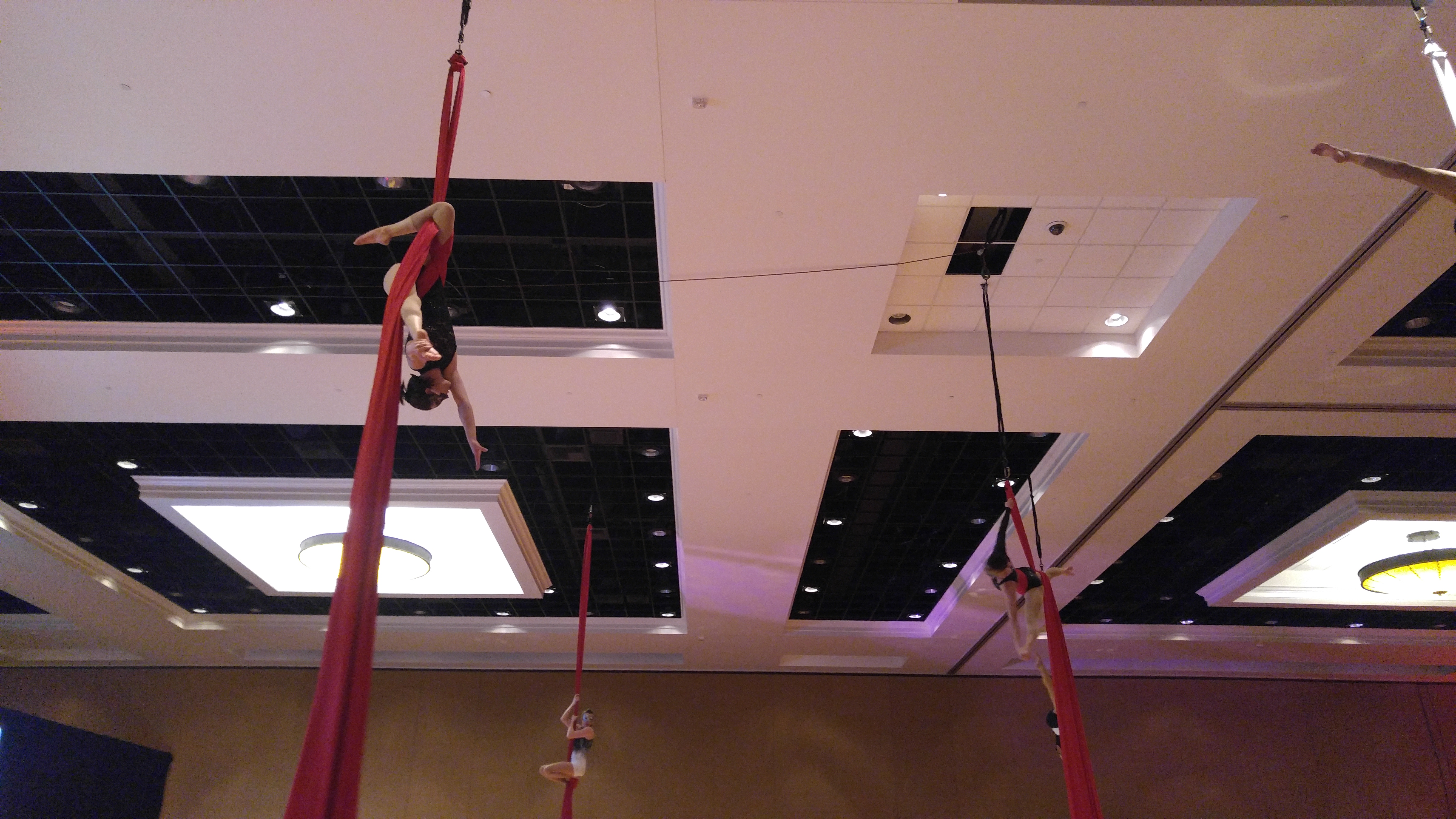 Dragonfly Profes. Aerial Company