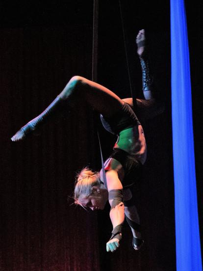 EMILY WEGERT Straps, Trapeze, Hoop, Fabric & Duo