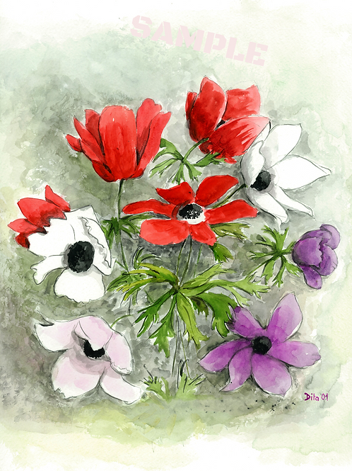 White and Red Anemones.  2001
