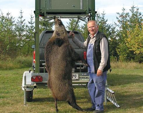 Wildschwein-HimmelCMYK Kopie.jpg