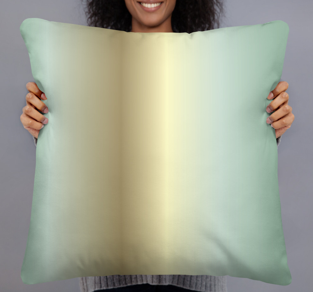 """22"""" square linen like pillow cover $36"""