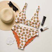 Rainbow Arches Recylcled Bikini