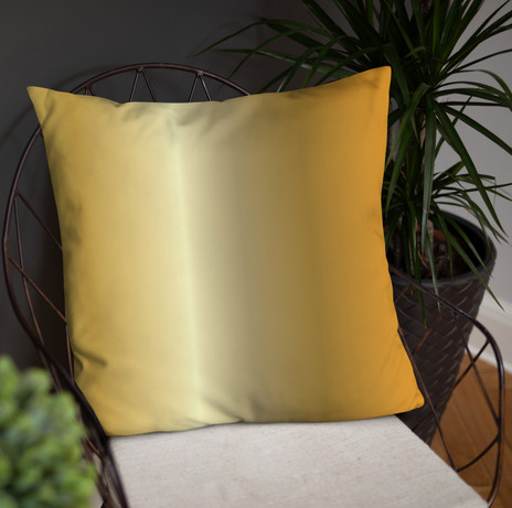 """18"""" square ombre pillow $39"""