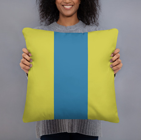 colorblock pillow cover starting at $27
