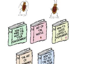 Cucaracha Novels