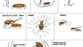 Cucaracha Fight - Part Deux