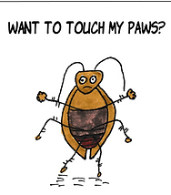 TouchPawsWebSite.png