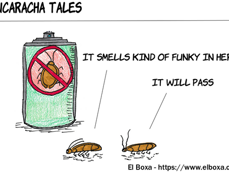 The Funky Smell