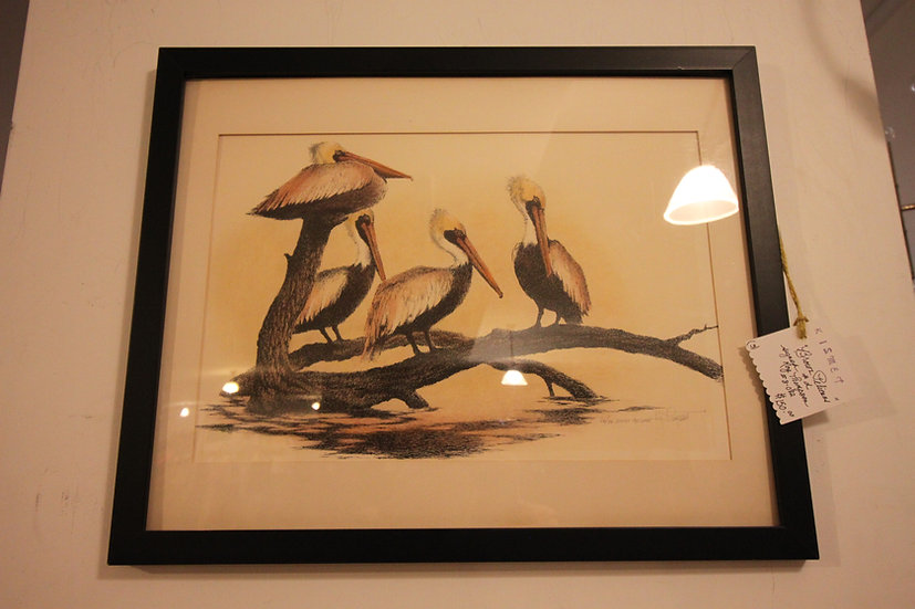 Roy Thompson Signed Pelican Print