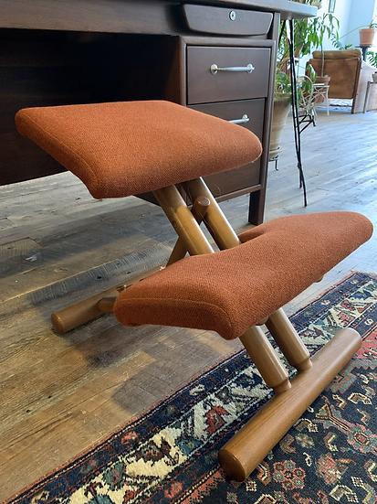 Vintage Ergonomic Chair