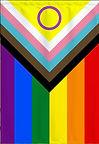 pride with circle flab .jpg