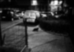 00057_edited.jpg