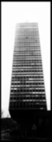 T2528.jpg