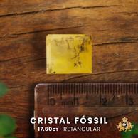 Cristal Fóssil