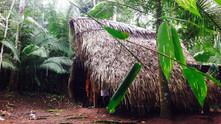 Heilpflanzenkur im Amazonas von Peru