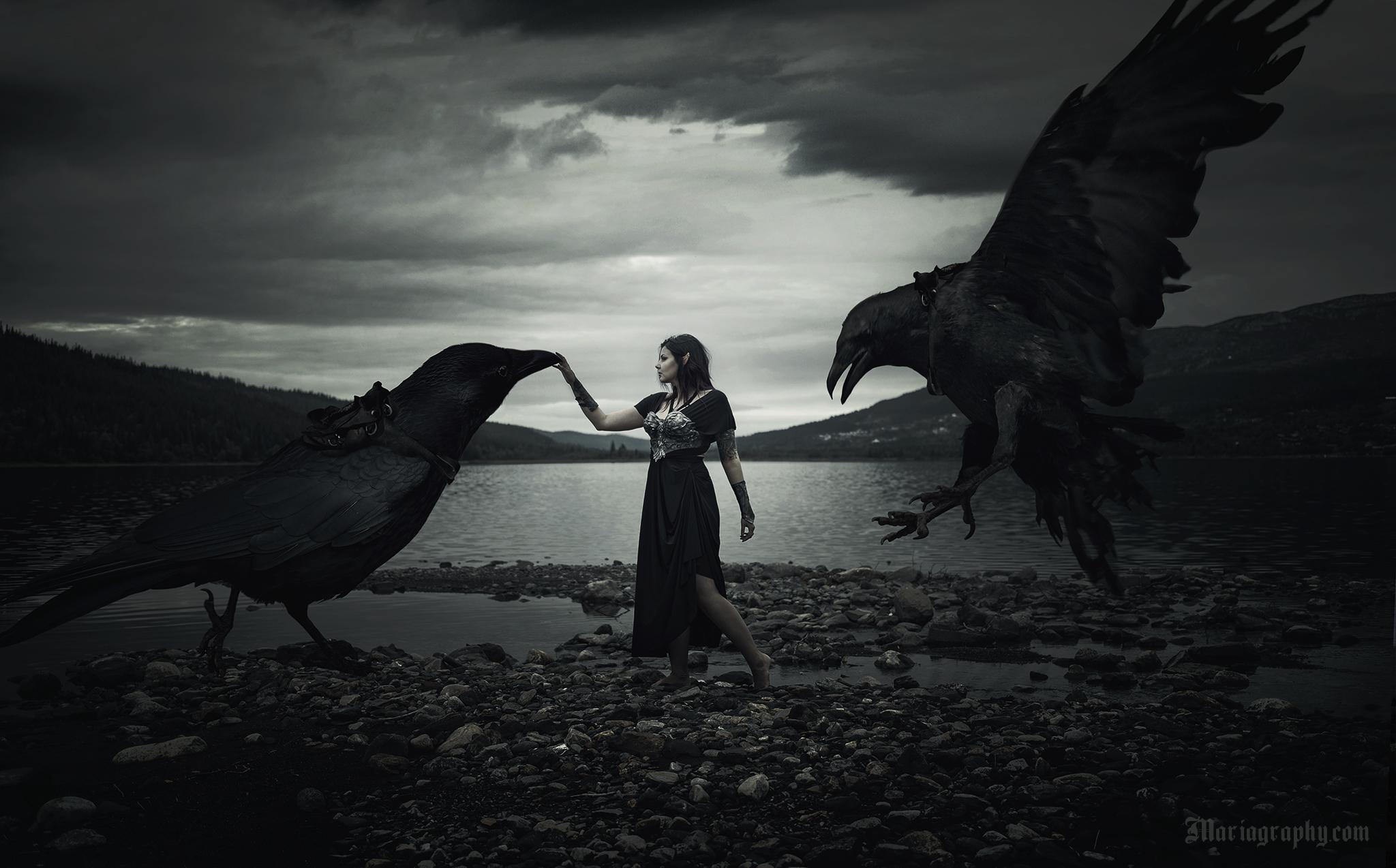 Raven rider